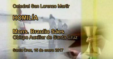 Mons. Braulio Saéz: Ser bautizado es acoger la vida y defender la vida en todas sus manifestaciones