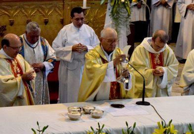 """Mons. Luis Sáinz: """"Dios es el gran amigo de la vida del ser humano y de todos los vivientes que Él creó en la naturaleza """""""